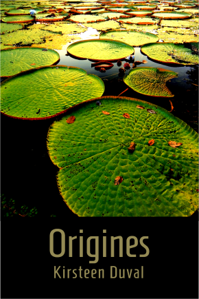 Couv Origines 2