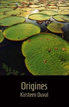 couv Origines wordpress