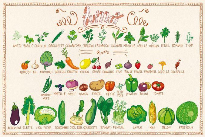 fruits legumes saison juillet